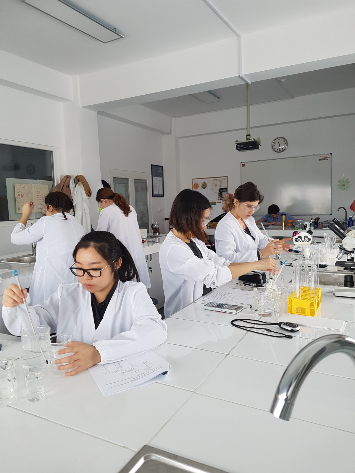 science practical Then the exams at the end of the course will assess their practical skills we've created these resources to support you and your students with the new approach if you have any questions, email our gcse science team or call 01483 477 756.